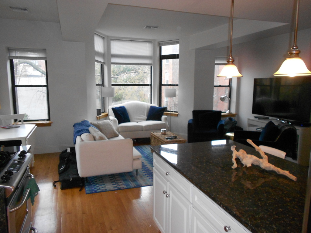 luxury two bedroom two bath with park views city suites